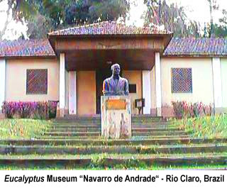 Museu do Eucalipto / Horto Florestal de Rio Claro / Floresta Estadual Navarro de Andrade / Eucalyptus Museum Navarro de Andrade / Rio Claro Forestry Station / Navarro de Andrade State Forest / Rio Claro / Sao Paulo / Brazil