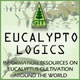 Eucalyptologics, Information Resources on Eucalyptus cultivation worldwide, by GIT Forestry Consulting