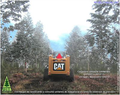 Caterpillar CAT 277C multi terrain loader on shrub slashing duty in a high value Eucalyptus timber plantation in Galicia / GIT Forestry Consulting, Consultoría y Servicios de Ingeniería Agroforestal collaborates with Caterpillar for machine testing / Lugo / Galicia / Spain / Eucalyptologics: Information Resources on Eucalyptus cultivation worldwide / Eucalyptologics: Recursos de Información sobre el Cultivo del Eucalipto en el Mundo