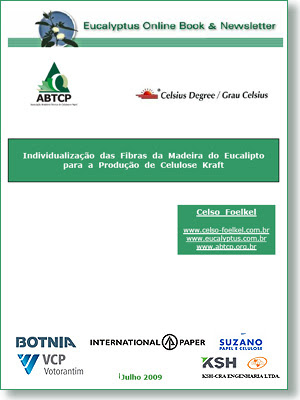 Individual Eucalyptus Fiber and Kraft Cellulosic Pulp Production / Eucalyptus Online Book, July 2009, by Celso Foelkel / Eucalyptus Wisdom from Brazil / La fibra individualizada de eucalipto y el proceso de producción de pulpa de celulosa Kraft / Libro Online Eucalipto, Julio 2009, por Celso Foelkel / Ecoeficacia, Ecoeficiencia, Produccion Mas Limpia / Sabiduría eucalíptica desde Brasil