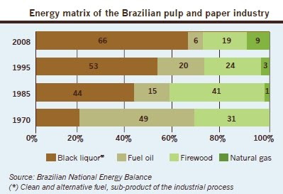 Brazilian pulp and paper industry uses renewable fuels up to 85%, a timber fueled industry / La industria de celulosa y papel del Brasil usa hasta un 85% de energia renovable, su energia es la madera / Gustavo Iglesias Trabado, Roberto Carballeira Tenreiro and Javier Folgueira Lozano / GIT Forestry Consulting SL, Consultoría y Servicios de Ingeniería Agroforestal, Lugo, Galicia, España, Spain / Eucalyptologics, information resources on Eucalyptus cultivation around the world / Eucalyptologics, recursos de informacion sobre el cultivo del eucalipto en el mundo / Image courtesy Bracelpa, Brazilian Pulp and Paper Asociation
