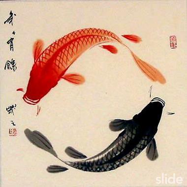 http://outfitnm.com/wp-content/uploads/Yin-Yang-fish-art.jpeg ...