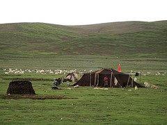 Nomad yak tent