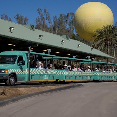 Cheap San Diego Zoo tickets are available. See a list of all events happening at San Diego Zoo.