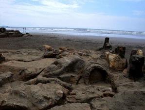 Menyapa Malin Kundang di Pantai Air Manis
