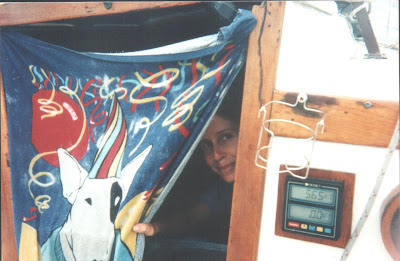Windy peering through companionway during tropical storm Andres