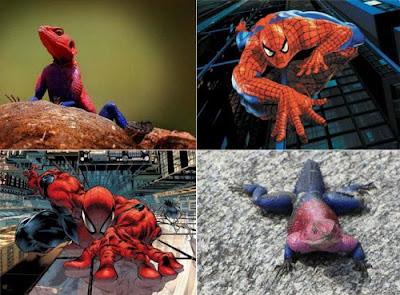 La Mascota del Hombre Araña
