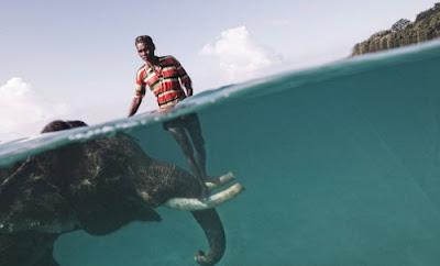 Concurso Internacional de Fotografía 2009