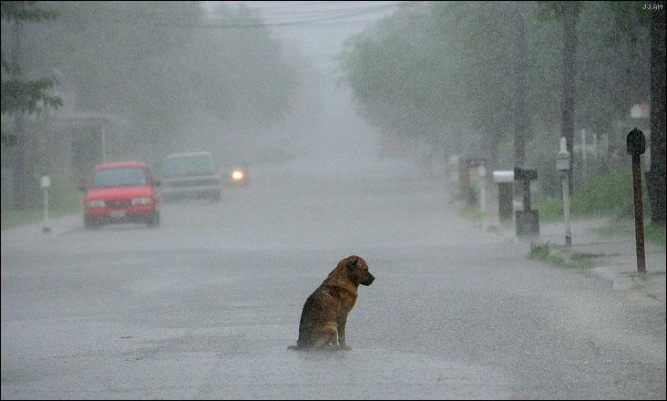 photofashionista: Uh baby it's raining raining
