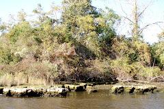 The Rock Pile Shore