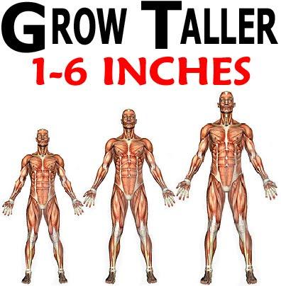 grow taller at any age