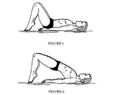 back stretching exercises