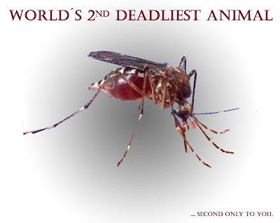 Second deadliest animal on earth