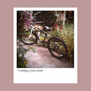 iPhone polaroid, bicycle