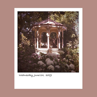 iPhone polaroid, hydrangeas, gazebo