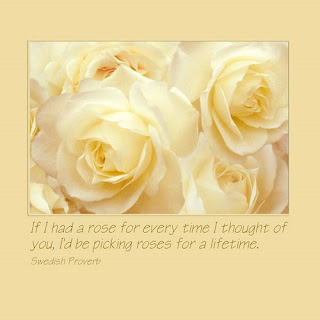 white roses, canvas wrapped giclee print, Swedish Proverb