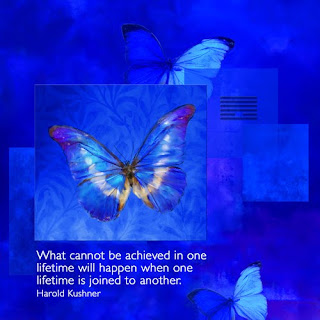 butterflies, canvas wrapped print, Harold Kushner quote