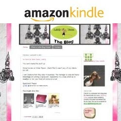 Get My Blog For Your Kindle