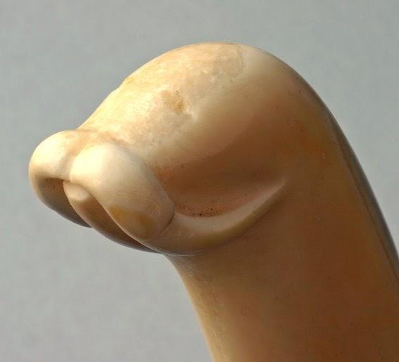 hvor mange tenner har en von gamle nakne