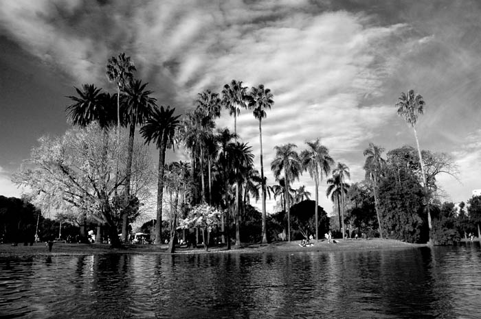Black white landscape photography