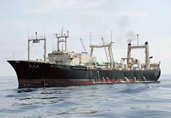 Nisshin Maru