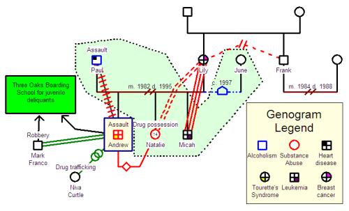 Contemporary families class five genograms