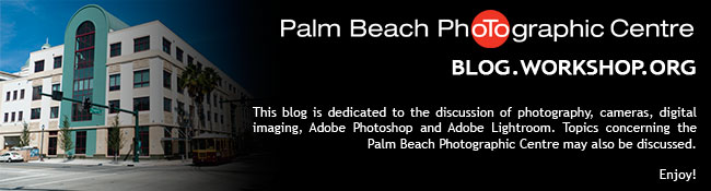 Palm Beach Photographic Centre Blog