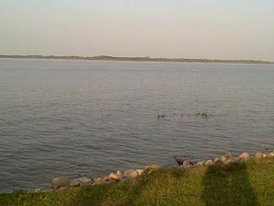 City of allen fishing lake lavon brockdale park april for Lake lavon fishing