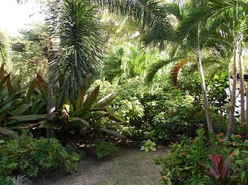 Grenada, W. I.
