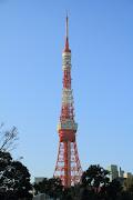 日本で2番目の高さになった東京タワー。 (dpp )