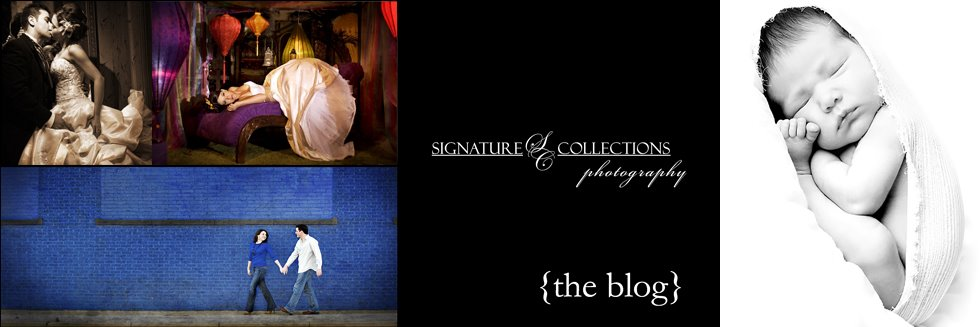Signature Collections Photography Blog