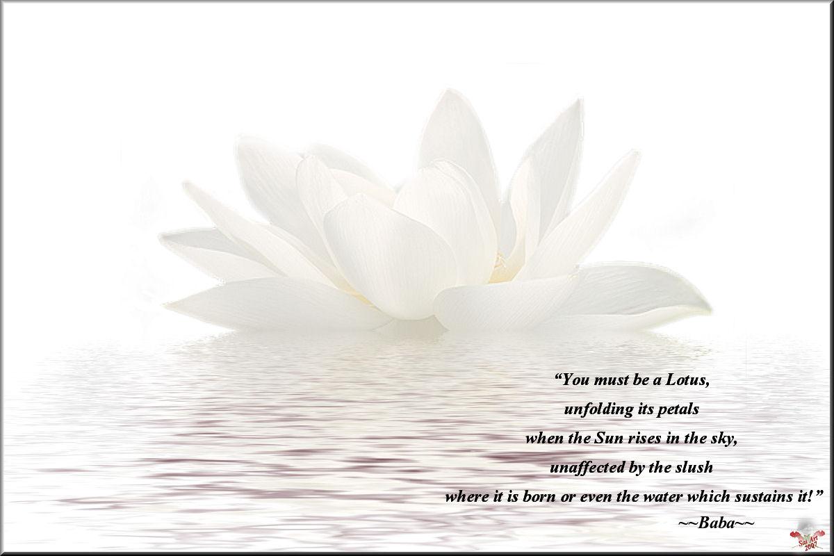 Quotes of bhagavan sri sathya sai baba quote 60 quotes of bhagavan sri sathya sai baba izmirmasajfo