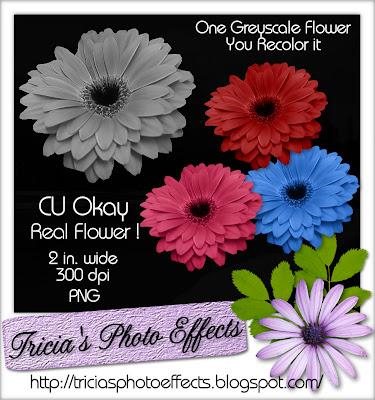 CU Flower Freebie 2 Tricia_gerber+recolor_cu