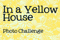 In a Yellow House / Photo Challenge