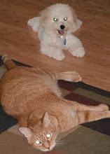 Annie and Tigger