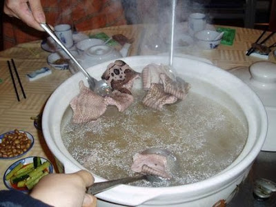 Disgusting Snake Soup Mea