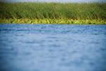 Danube Delta - Delta Dunarii