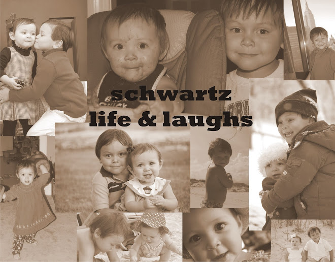 Schwartz Life and Laughs