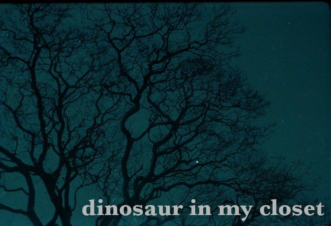 dinosaur in my closet