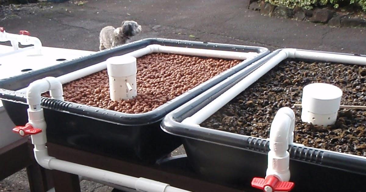 Aquaponics fish to grow bed ratio plans diy for Aquaponics grow bed