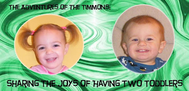 The Adventures of the Timmons: Sharing the Joys of Having Two Toddlers
