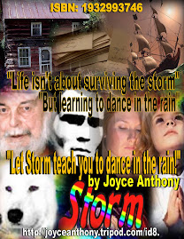 "Take At Look At ""Storm"" by Joyce Anthony"
