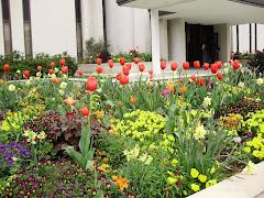 Flowers at Atlanta Temple