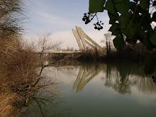 Puente de la Hispanidad.