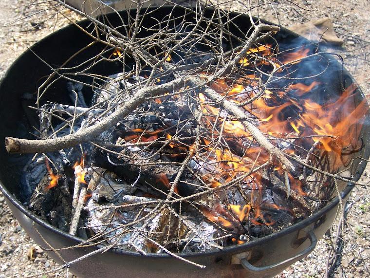 Webber Grill Pit Fire