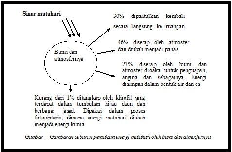 Energi matahari yang ditangkap pada proses fotosintesis merupakan ...