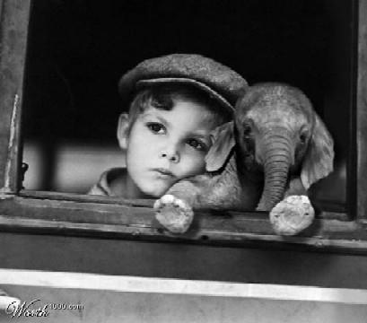 menino+e+elefante.jpg