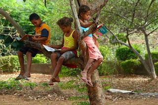 crianças lendo livros em cima de uma árvore