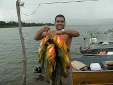 Unos Pavones pescados por Rafael Barros el campeón