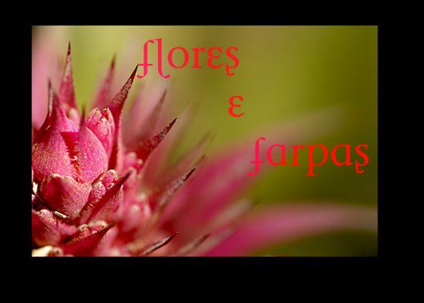 Flores e Farpas
